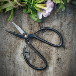 FREJ Scissors Small