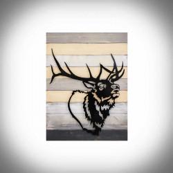 picture deer
