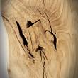 oak wood lovely tabletop oak wood